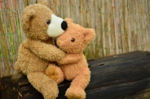 teddy-1113160-300x198